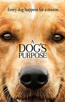 Now Showing: <b>                                              A Dog's Purpose</b>